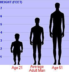 Really. average height midget