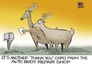 Image result for deer cartoon images