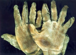 Human skin gloves made by Ed Gein