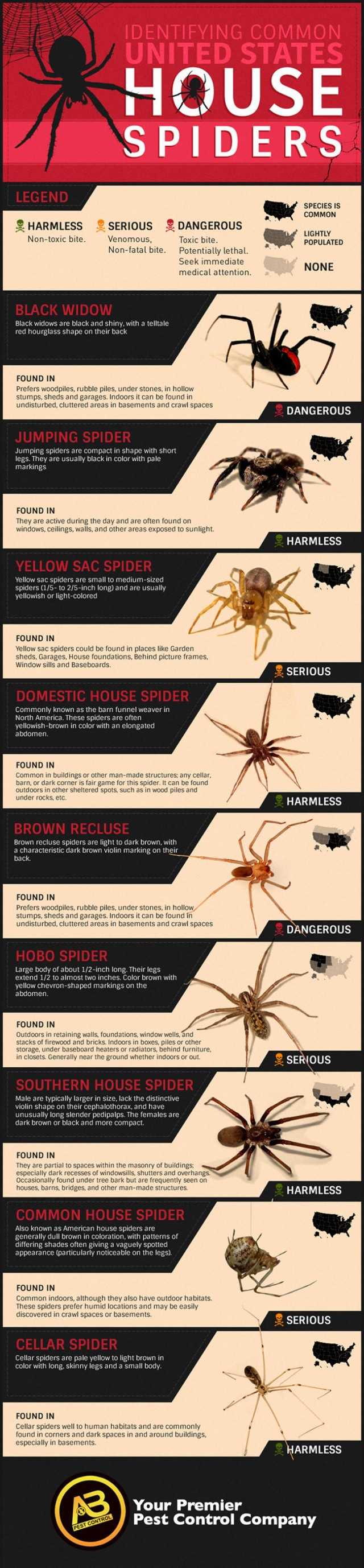 identifying-common-us-house-spiders_53273b84b3959_w1500