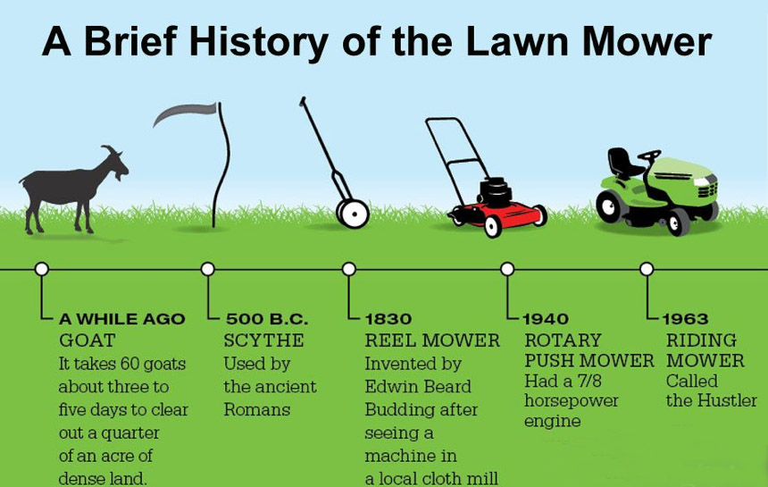 A History Of The Lawn 171 Spydersden
