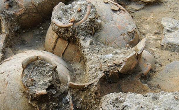Canaanite-Wine-Cellar-Tel-Kabri