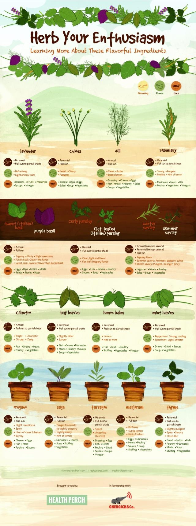 Herbs-Final