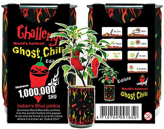 ghostchilli3-1