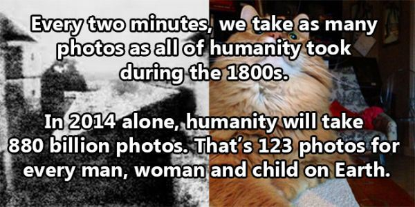 facts_about_humanity_13