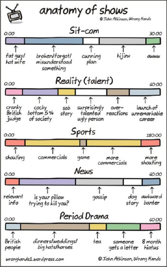 Anatomy-of-shows
